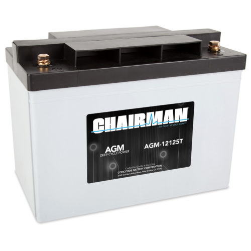 Chairman Battery AGM-12125T